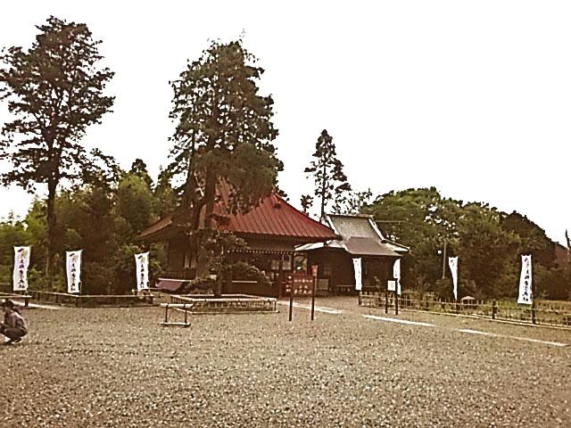 DSC_1921x.JPG