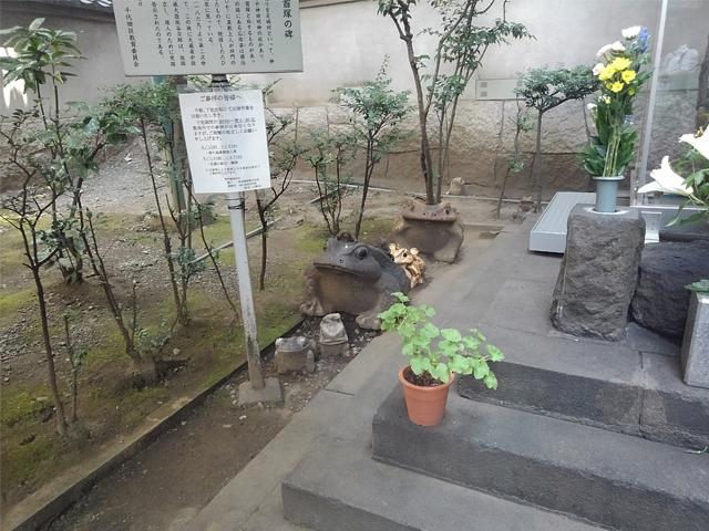 KIMG8846.JPG